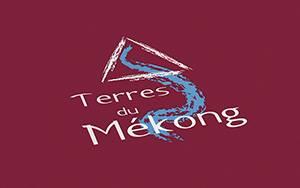 Logo_TDM_300